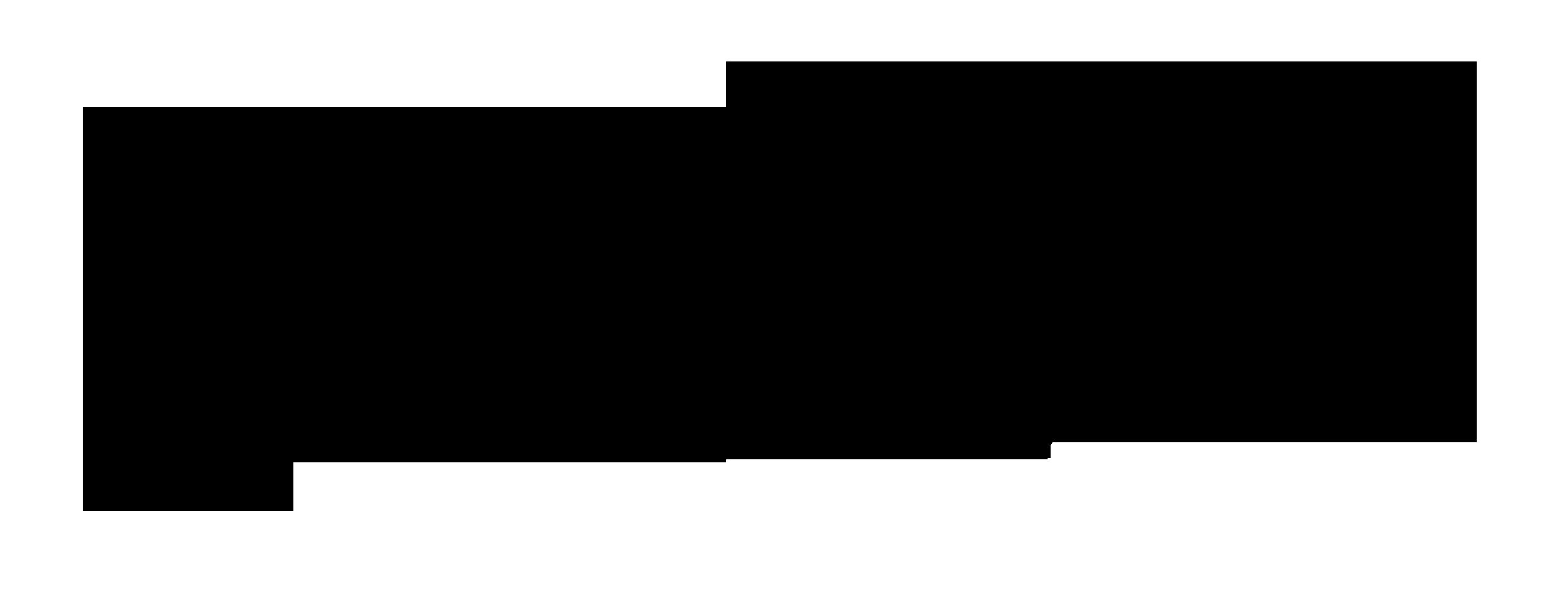 michele cammariere logo
